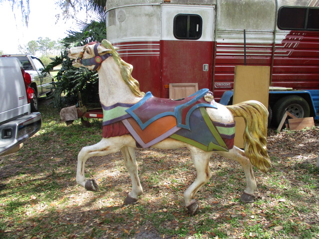 Flowered PTC Stander Stargazer Gold Mane & Tail